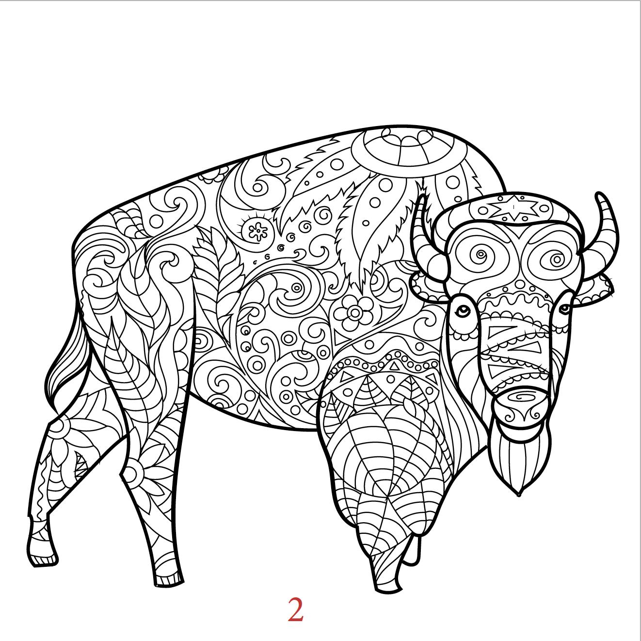 Far Buffalo